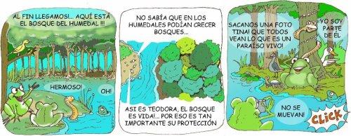 Biodiversidad en am rica latina 2 de febrero d a for Porque son importantes los arboles wikipedia