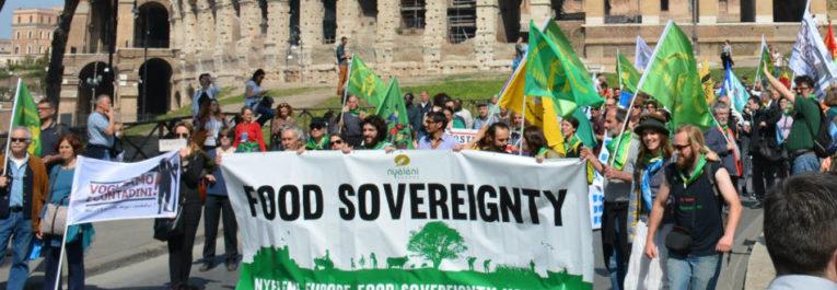 ¡Soberanía Alimentaria YA! Una guía detallada | Biodiversidad en América Latina